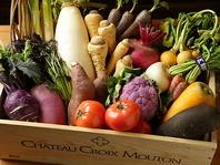 無農薬にこだわったアンチエイジング効果が高い鎌倉野菜