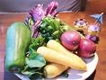 【島野菜】ゴーヤー、島らっきょうなど定番の島野菜をはじめ、『宮古島あたらす市場』から直送される、「宮古ぜんまい」「パルダマ」「長生百薬」「オオタニワタリ」など北海道では珍しい食材も入荷しております。