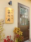 上野桜木 菜の花の詳細