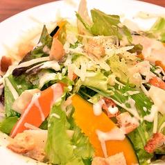 料理メニュー写真季節のグリーンサラダ シーザーサラダ風