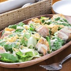 料理メニュー写真ハーブグリルチキンのシーザーサラダ