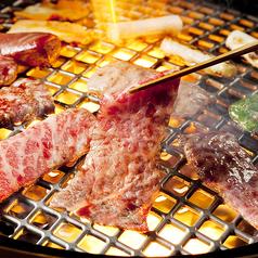 焼肉ダイニング ちからや 品川店のおすすめドリンク1