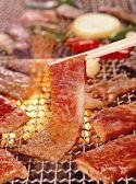 民芸肉料理 はや 泉北の郷特集写真1