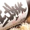 和味酒彩 秋夏のおすすめポイント1