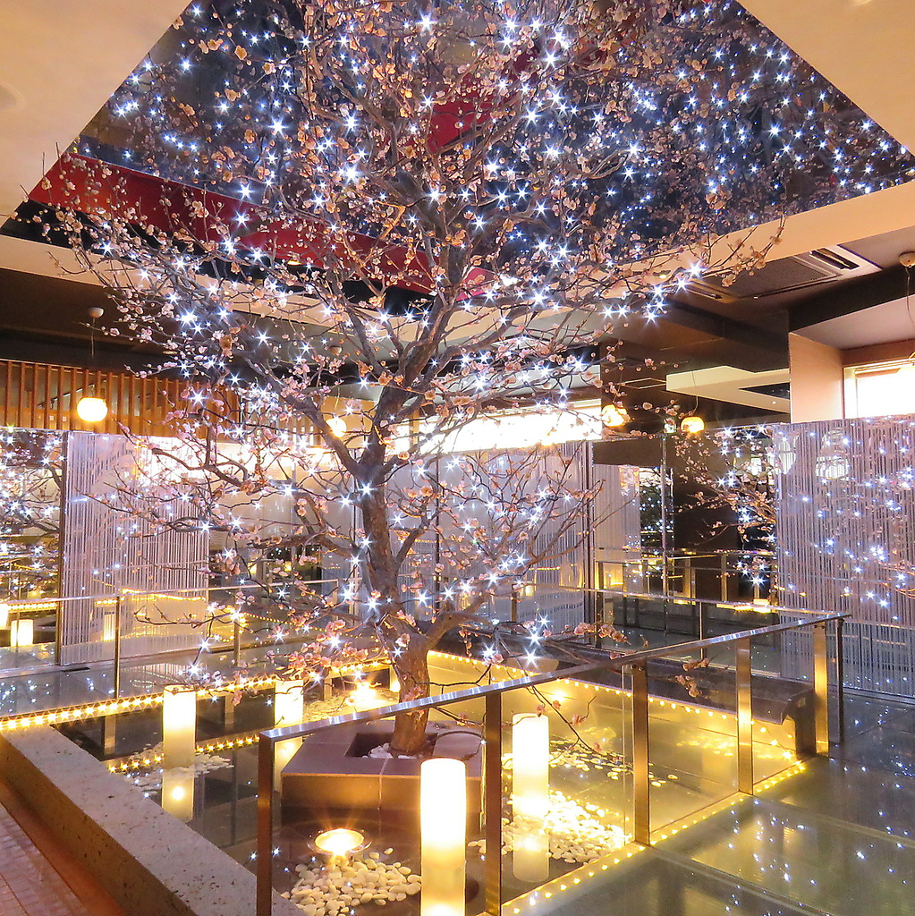 全席個室 ウメ子の家 札幌駅前店|店舗イメージ1