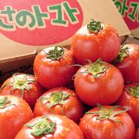 高糖度の【さのトマト】!