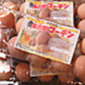 料理メニュー写真名古屋コーチン玉子のプリンはコーチンの玉子を使っています。