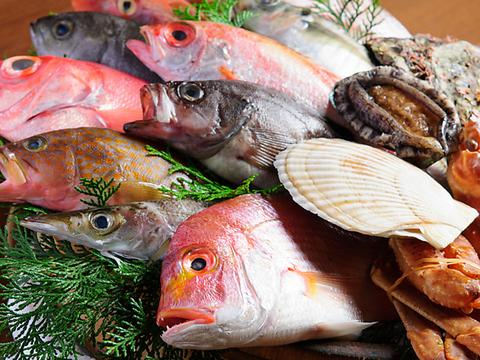 神戸で旬魚の大桶盛が有名な【沖の瀬】!!一番人気の大漁桶盛コースは4320円!