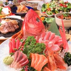 魚菜市場 いごこ家 名古屋駅店の特集写真