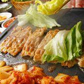 韓食 ハンシク チーズタッカルビ 六本木横丁店 六本木のグルメ