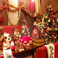 【冬】メリークリスマス♪音楽ももちろん、クリスマスツリーも飾ってあるので、素敵なひとときを過ごせるこの時期。装飾を見るためだけに来店されるお客様もいるほど♪一年で一番輝く季節