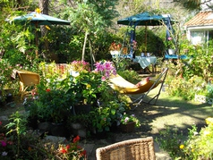 garden caf...のサムネイル画像