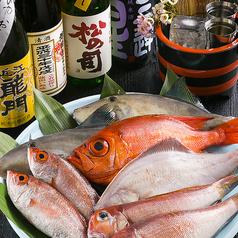 日本酒と魚串 松吉の写真