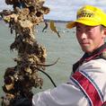 【北海道厚岸産牡蠣漁師大澤さん】牡蠣にかける情熱は人一倍!