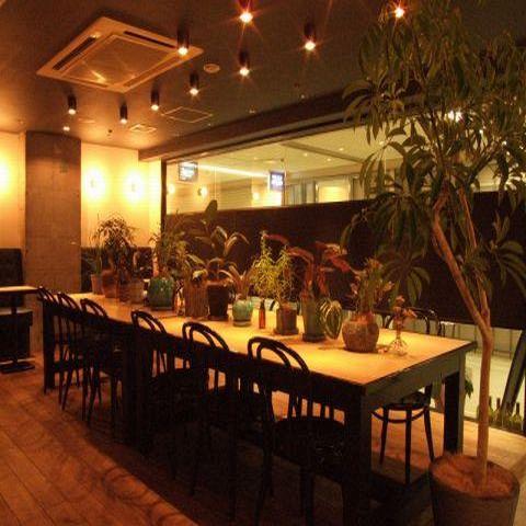 観葉植物が並ぶテーブル席♪