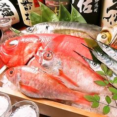 個室居酒屋 魚の旨いよろこんで 倉敷駅前本店の写真