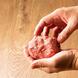 保存方法からこだわる!自慢の赤身肉をご堪能下さい。