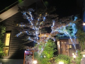 梯 かけはし 高松 香川のグルメ
