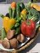 新鮮彩り野菜