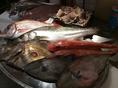 ソーセージやお肉料理だけでなく、自慢の魚料理もご用意しております。新鮮な食材を使用しておりますので、メニュー内容はお問い合わせください。