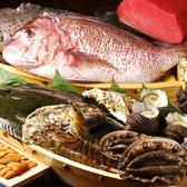 漁港直送で、札幌、函館、伊勢から鮮魚を仕入れています。朝、水揚げされた鮮魚が昼過ぎにお店に到着。料理人の仕込みは時間との戦いになりますが、その分、美味しさは格別です。まずはその日のおすすめを、お造り盛合せでどうぞ。ホッケやニシンのお造りなど、鮮度自慢の珍しい味わいもお愉しみください。船盛も可能です。