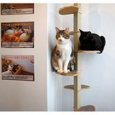 SAVE CAT CAFEの雰囲気3