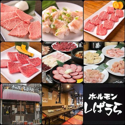 武蔵新城駅すぐ◎鮮度抜群のホルモンやA5ランクの特上和牛をリーズナブルに堪能♪
