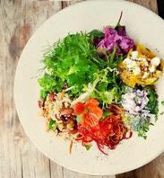 季節野菜のサラダ&デリプレート