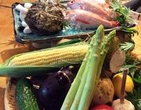 その時の旬に合わせ、色とりどりな野菜を仕入れています