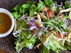 料理メニュー写真きのこサラダ