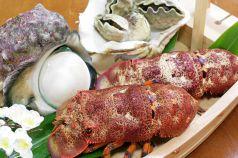 沖縄郷土料理 めんそーれの特集写真