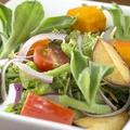 料理メニュー写真十種野菜のサラダ(加賀野菜入)