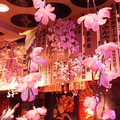 居酒屋 TSUBAKI HOUSEの雰囲気1