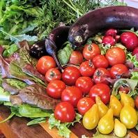 契約農家から直接仕入れる厳選された新鮮野菜で舌鼓♪
