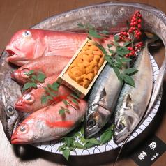 大名 魚喜 うきのコース写真