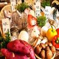 産地直送鮮魚、新鮮野菜♪