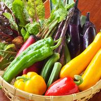 小伝馬町でこだわりの国産野菜をご賞味ください!