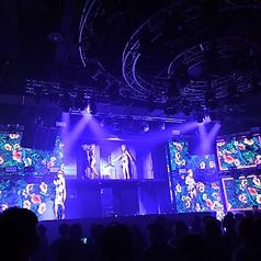 Night Club WARP SHINJUKU クラブ ワープ 新宿のコース写真