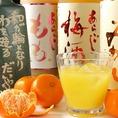 【果実酒・ハイボール多種ご用意】女性が飲みやすい「果実酒」も豊富に御用意!各種500円!!