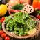 フレッシュ野菜のグリーンサラダ