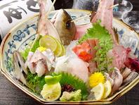 旬なとれたて鮮魚をリーズナブルに!