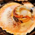 香ばしさが食欲をそそる「大あさり浜焼き」など、当店は貝類を使用した海鮮料理もおすすめ!伊勢・志摩直送のサザエ、アッパ貝、アワビ、ホタテなど毎日10種以上の貝をご用意しております。気さくなスタッフのいるにぎやかで昔懐かしい昭和情緒あふれる店内でごゆっくりお楽しみ下さい♪