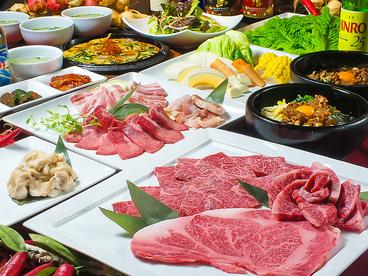 Kara Kara 韓辛 日明店のおすすめ料理1