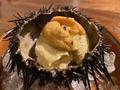 料理メニュー写真生ウニのパンナコッタ