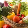 千葉県産の食材を使用するこだわり!主に千葉県産の旬野菜を使用しております。旬の採れたて産直野菜をお楽しみいただけます!アクア・エ・ソーレは、イタリア語で「Aqua=水」「Sole=太陽」を意味し、【水・太陽で育った野菜や食材を使って、美味しいイタリア料理をご提供しよう】というコンセプトでつけました。