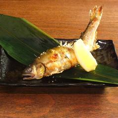鮮魚米粉天ぷら あ乃ねのおすすめ料理1
