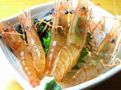 ヤン衆漁場 二代目 昌栄丸のおすすめ料理1