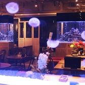 テーブル席は4×4で16名様迄◎クラゲ水槽側と熱帯魚水槽側とで選べます。パーテーションで大型の半個室仕様になります。