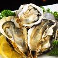 料理メニュー写真牡蠣食べ放題