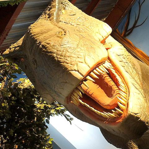 非日常!恐竜を囲いながらのレストラン♪迫力満点の恐竜をぜひ一度見に来てください!